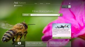 ask nature