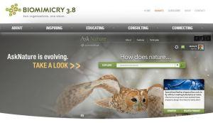 Biomimicry 3.8