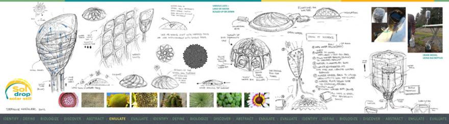 Stephanie Koehler Student Design Challenge
